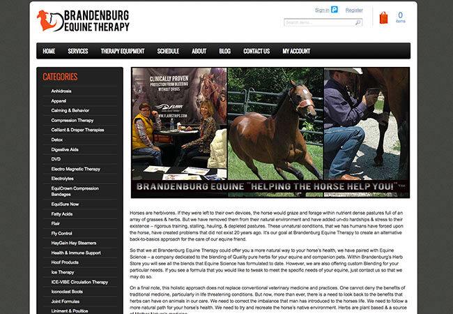 Brandenburg Equine Therapy Website Snippet